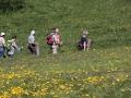 10b-hiking-3381721_1920