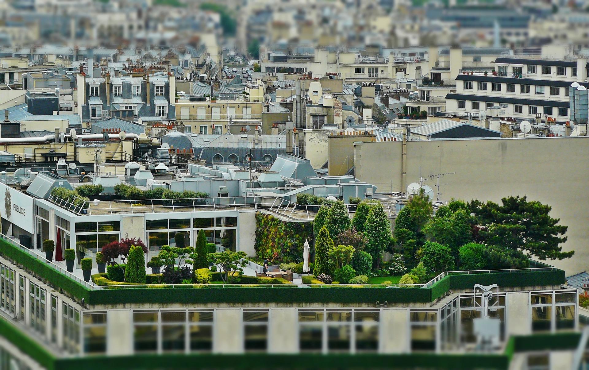 54-roof-terrace-1423897_1920_verduriser toiture