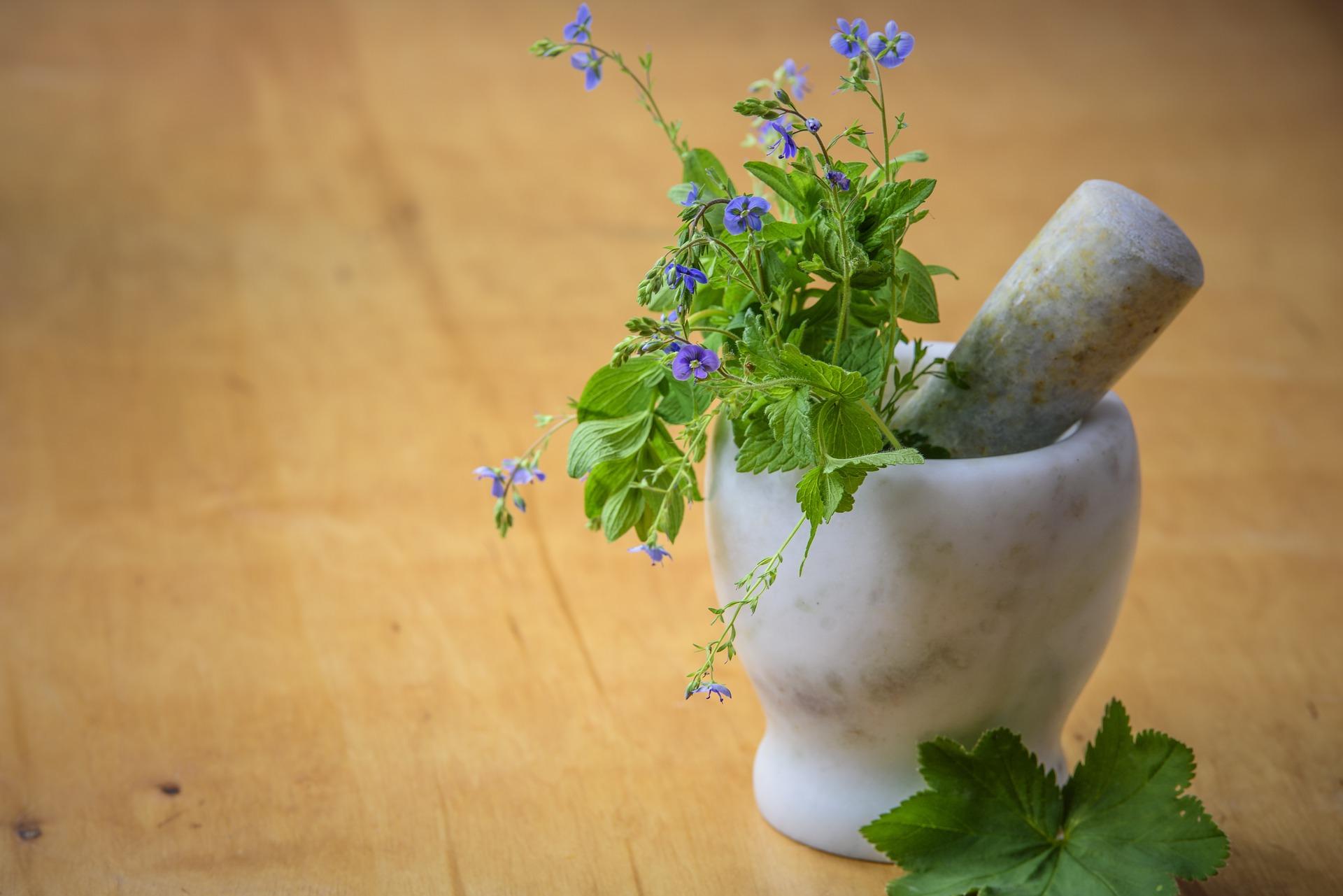 natural-medicine-1426647_1920